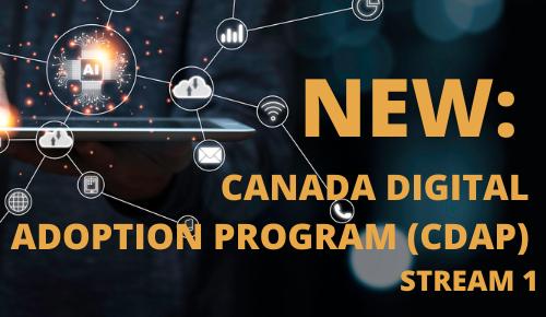 Canada Digital Adoption Program