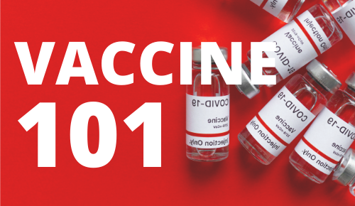 Vaccine 101 For Business Resource Hub